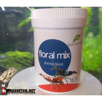 BorneoWild Floral Mix