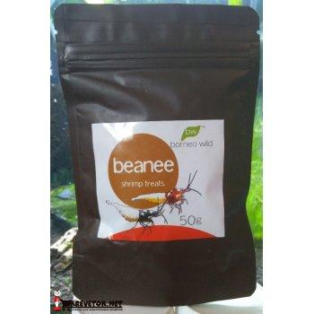 BorneoWild Beanee