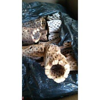 Трубка из кружевного кактуса Чолла (Cholla) 15 см