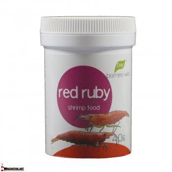 Borneo Wild RedRuby