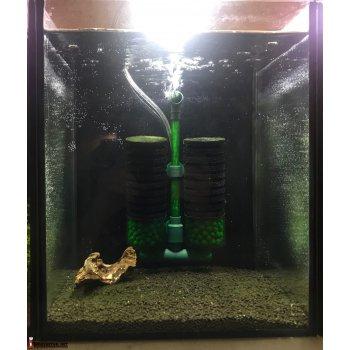 Готовый аквариум для креветок 3шт